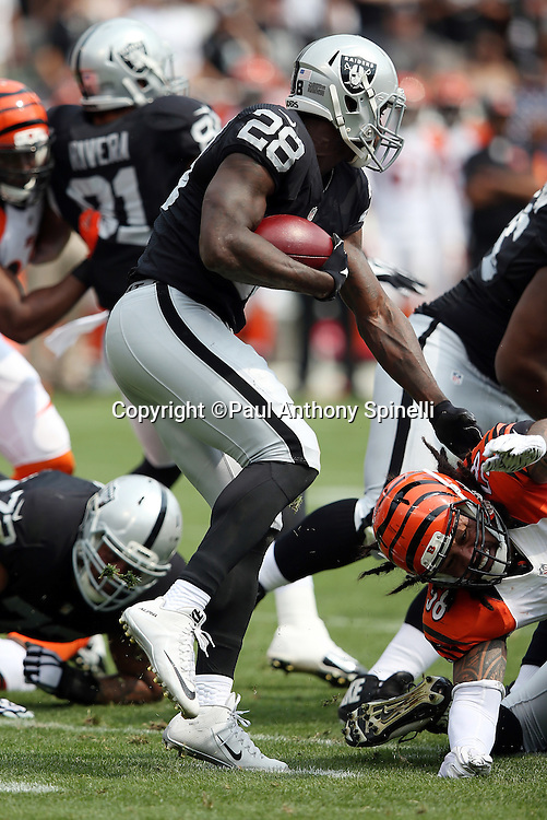 Oakland Raiders running back Latavius Murray (28) runs the ball in the first quarter during the 2015 NFL week 1 regular season football game against the Cincinnati Bengals on Sunday, Sept. 13, 2015 in Oakland, Calif. The Bengals won the game 33-13. (©Paul Anthony Spinelli)