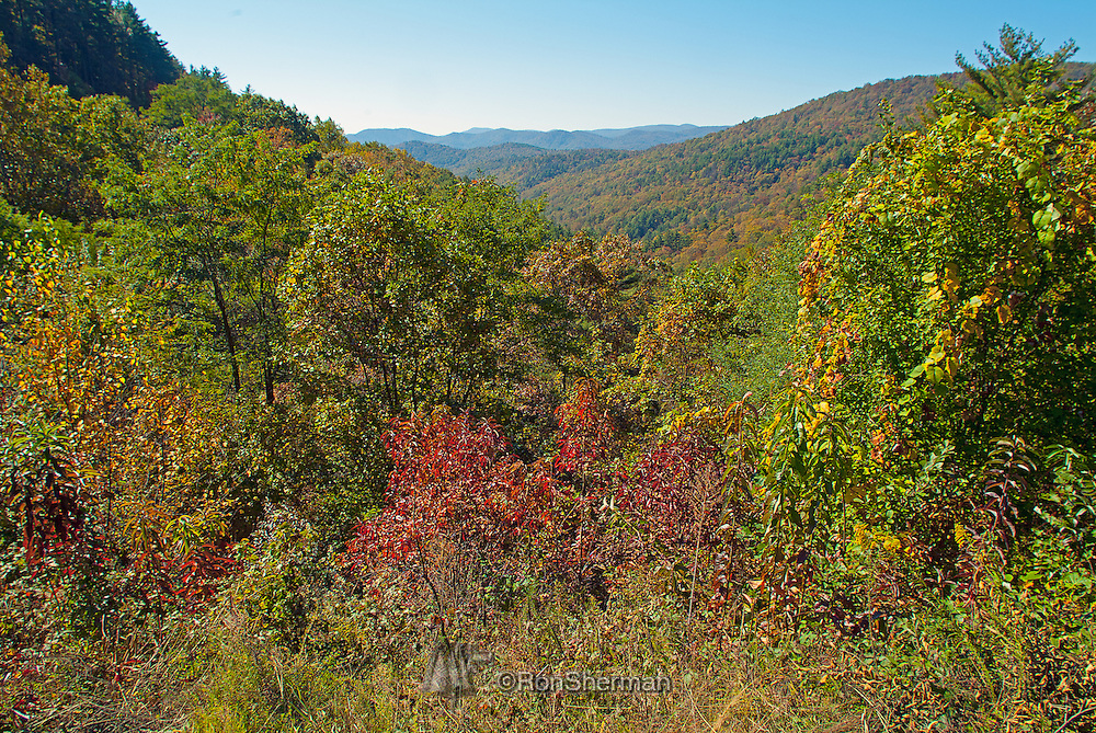 The Chattahoochee National Forest is located in northern Georgia. The area of the Chattahoochee National Forest comprises 750,145 acres. The county with the largest portion of the forest is Rabun County, Georgia, which has 148,684 acres within its boundaries. The Chattahoochee National Forest takes its name from the Chattahoochee River whose headwaters begin in the North Georgia mountains. The River and the area were given the name by the English settlers who took the name from the Indians living here. The Cherokee and Creek Indians inhabited North Georgia.