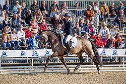 Mimberg, Mareike (GER) Golden Grey<br /> Warendorf - Bundeschampionate 2017<br /> © www.sportfotos-lafrentz.de/Stefan Lafrentz