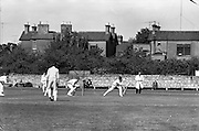 25/05/1962<br /> 05/25/1962<br /> 25 May 1962<br /> Senior Interprovincial Cricket, Leinster v Munster at Sydney Parade, Dublin. W.I. (Ian) Lewis (l.P.Y.M.S.) batting for Munster.