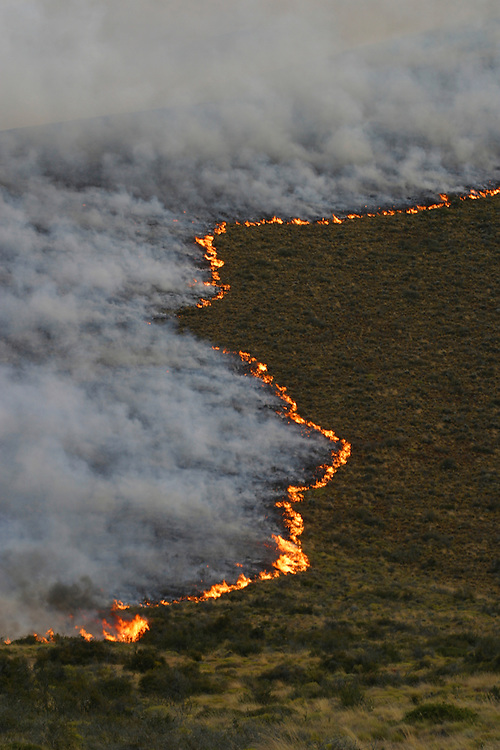A wildfire burns accross brushland near Calafate, Argentina, Jan. 18, 2004. Daniel Beltra/Greenpeace.