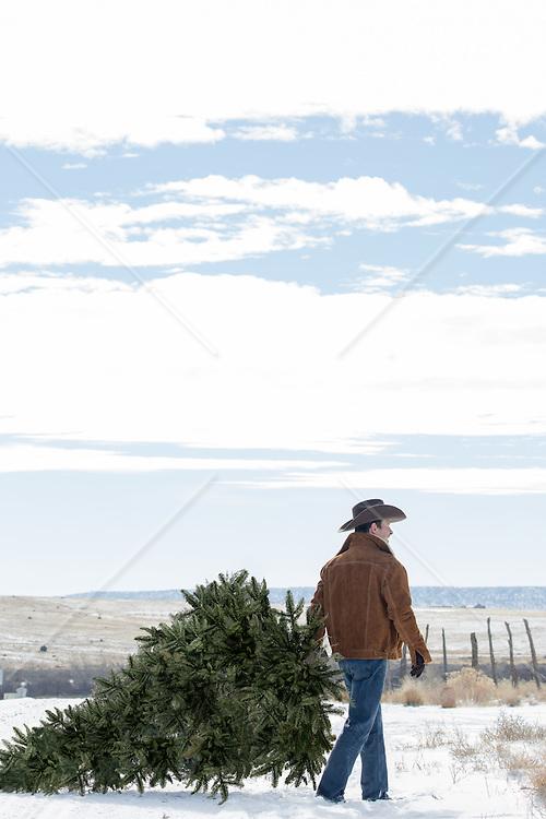 Cowboy with a fresh cut Christmas Tree