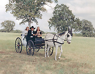Bride and her parents arriving in a mule drawn wagon.