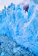 ice face at Le Conte Glacier- approximately 80' high