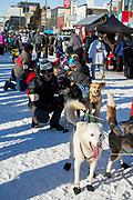 Mats Pettersson och hans hundar är redo inför den ceremoniella starten av 2017 Iditarod, Anchorage, Alaska, USA