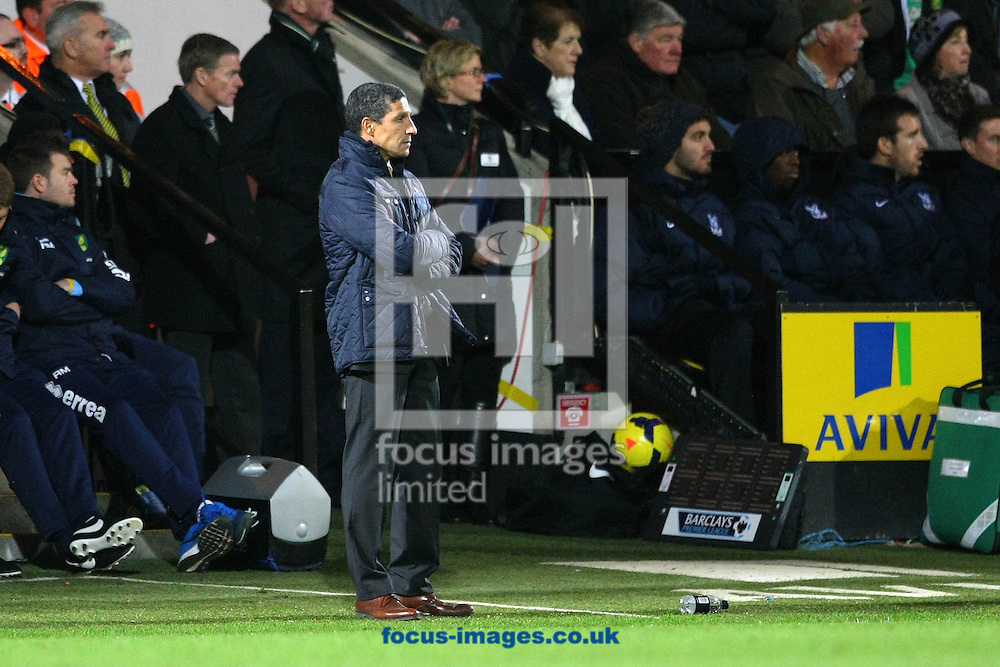 Picture by Paul Chesterton/Focus Images Ltd +44 7904 640267<br /> A worried looking Norwich Manager Chris Hughton during the Barclays Premier League match at Carrow Road, Norwich.