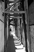 Black & White Photographic Art Print