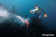 shimmering heat waves rising off erupting pillow lava distort the image of videographer Shane Turpin, filming underwater eruption at Kilauea Volcano, Hawaii Island (&quot; the Big Island &quot;), Hawaii, U.S.A. ( Central Pacific Ocean ) <br /> MR 352
