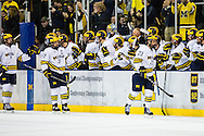 Wolverines Celebrate a goal by Alex Kile (23)
