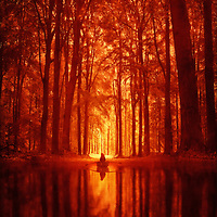Lone figure of a woman in a boat, rowing on a quiet river through an enchanted forest with reflections of trees