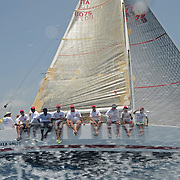 Caccia Alla Volpe<br />
