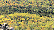 Yellows and greens contrast in this valley below the peak of Brockway Mountain near Copper Harbor.