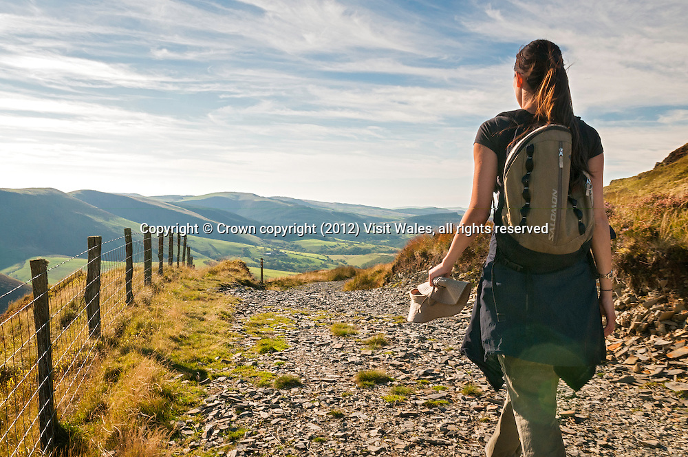 Female walker on Glyndwr's Way below Foel Fadian<br /> Cambrian Mountains<br /> Powys <br /> Mid<br /> Walking<br /> Activities and Sports