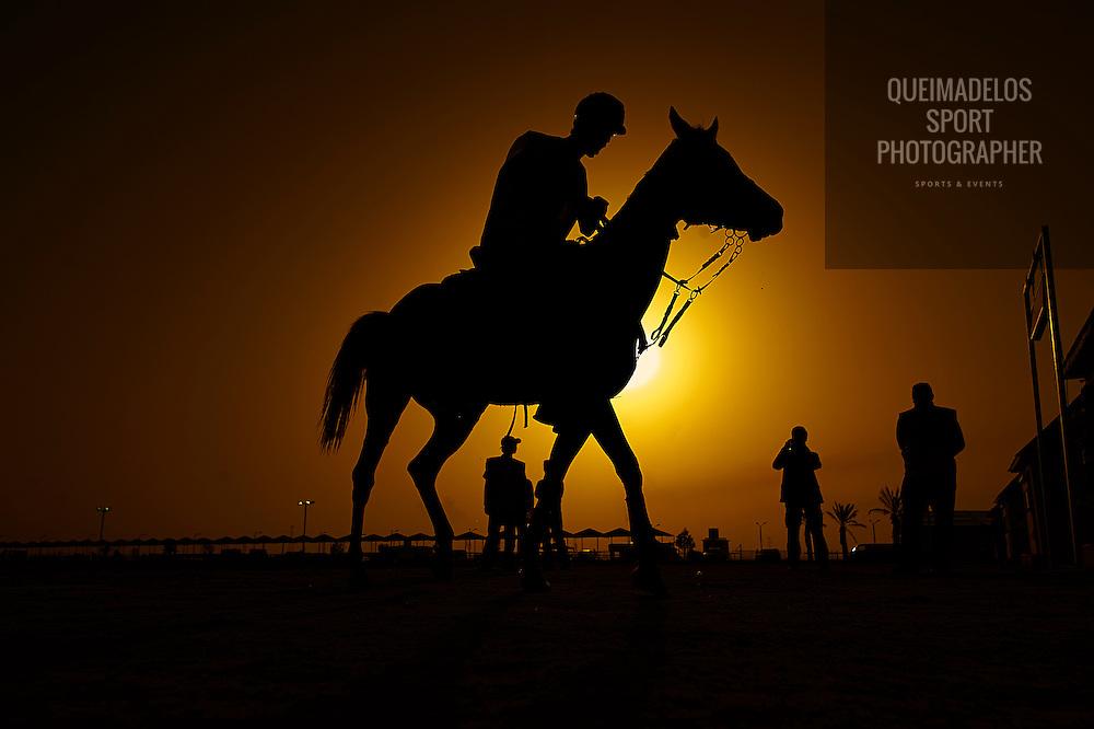 DOHA, QATAR - MARCH 15:  CHI AL SHAQAB 2014 at AL SHAQAB on March 15, 2014 in Doha. Qatar. (Photo by Manuel Queimadelos)