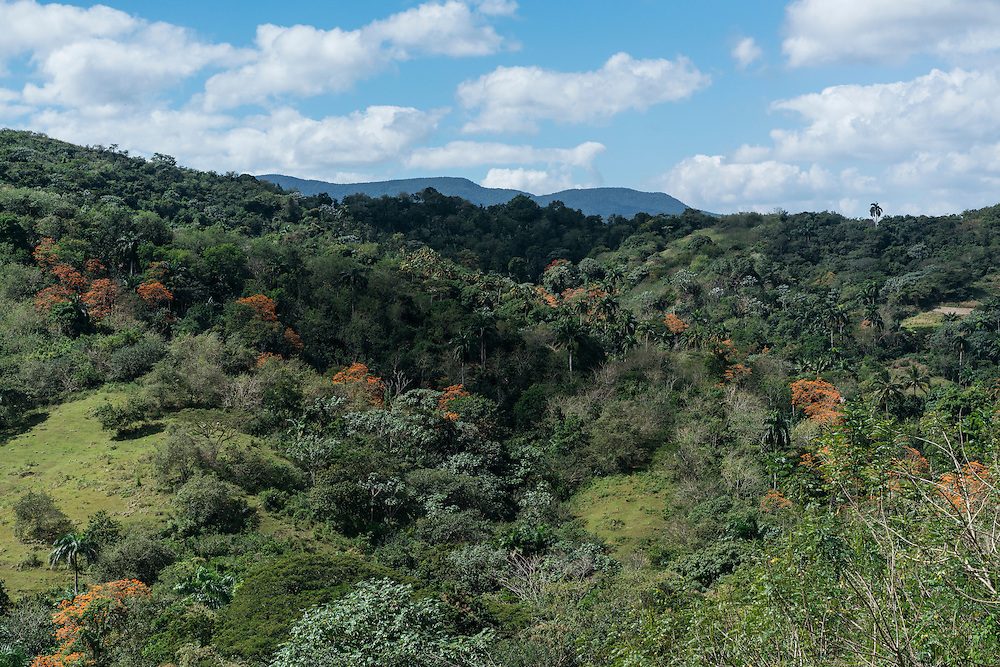 The landscape near Farrallones, in Eastern Cuba on Feb. 05, 2016.