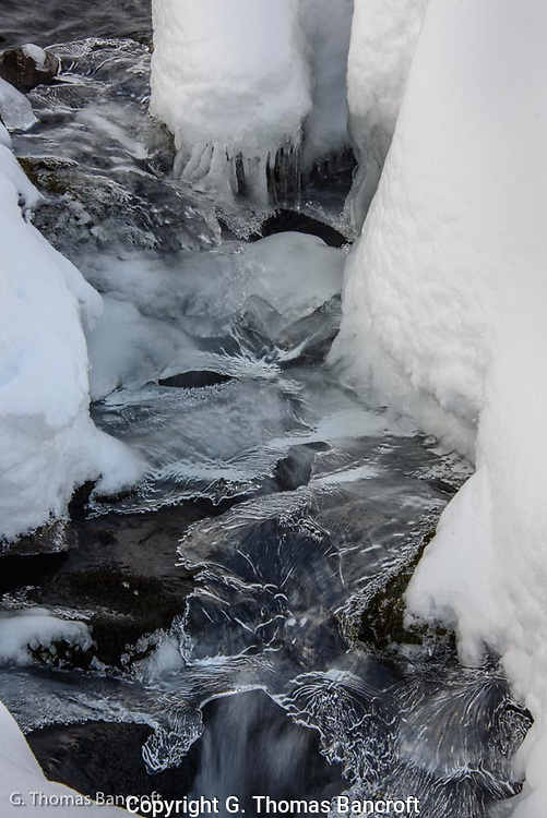 Ice dangles above the rapids in the creek forming an intricate design.