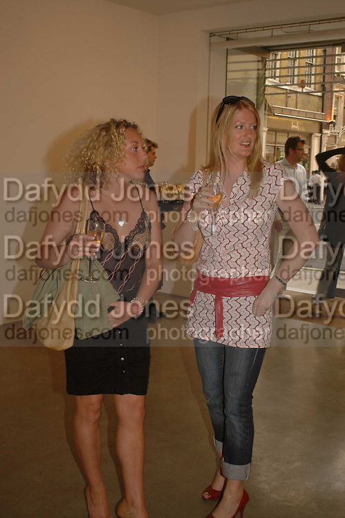 Shannon Brennan and Lucy Nebel,  Bridget Riley exhibition. Timothy Taylor Gallery. 6 June 2006. ONE TIME USE ONLY - DO NOT ARCHIVE  © Copyright Photograph by Dafydd Jones 66 Stockwell Park Rd. London SW9 0DA Tel 020 7733 0108 www.dafjones.com