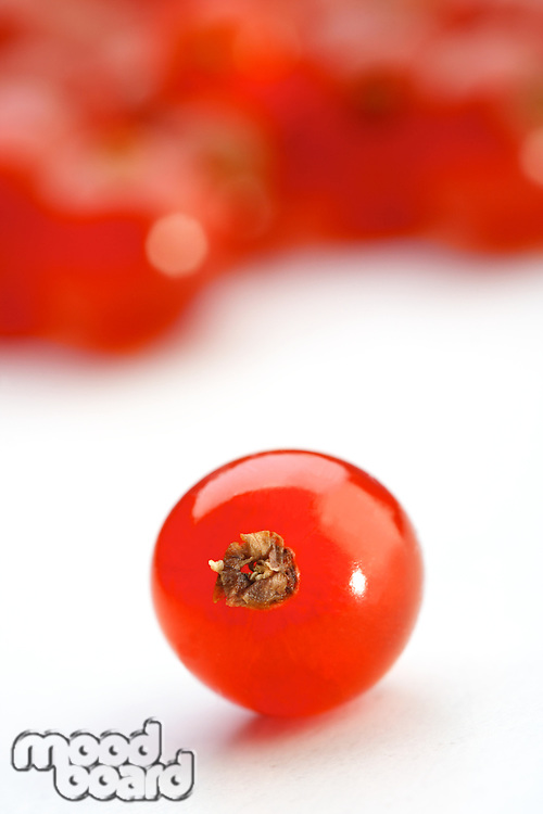 Close - up of red currant