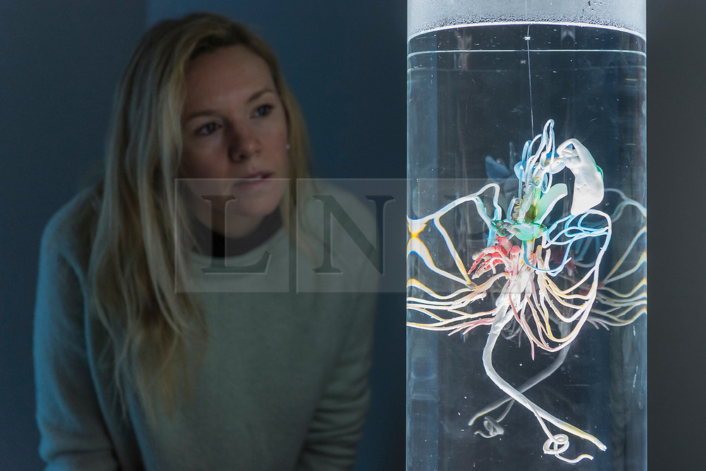 "© Licensed to London News Pictures. 20/11/2019. LONDON, UK. A staff member views ""P-Plastoceptor: Organ for Sensing Plastics"", 2014, by Pinar Yoldas. Preview of ""Eco-Visionaries"" exhibition at the Royal Academy of Arts in Piccadilly.  The exhibition examines humankind's ecological impact on the planet through works from 21 international practitioners using a variety of media.  The show runs 22 November to 23 February 2020.  Photo credit: Stephen Chung/LNP"