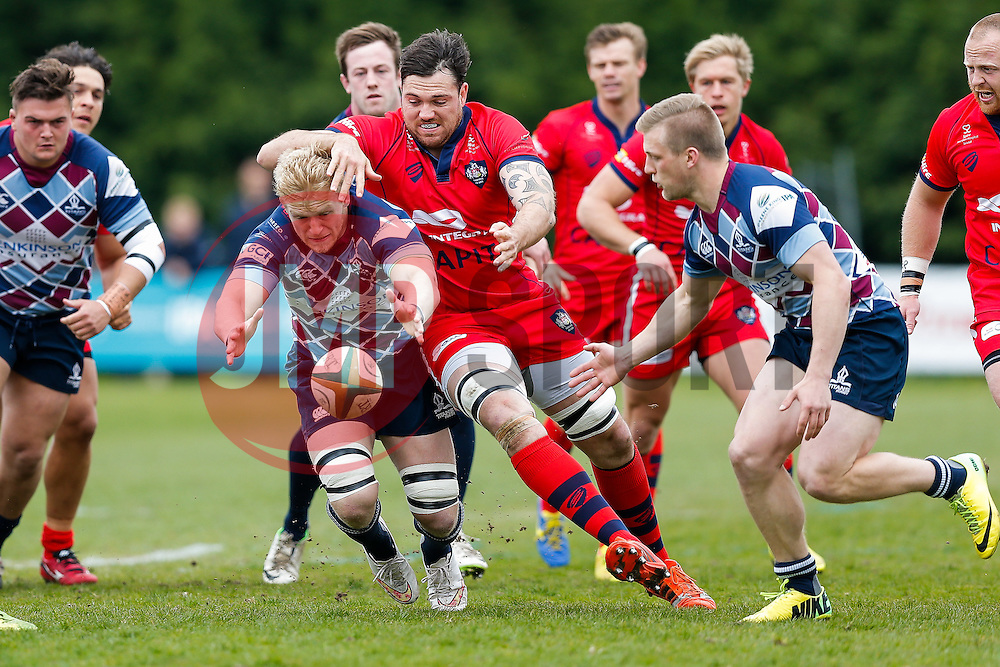 Rotherham Titans Number 8 Ben Morris is challenged by Bristol Rugby Lock Glen Townson - Photo mandatory by-line: Rogan Thomson/JMP - 07966 386802 - 10/05/2015 - SPORT - RUGBY UNION - Abbeydale Park, Sheffield - Rotherham Titans v Bristol Rugby - Greene King IPA Championship Play Off Semi Final Second Leg.