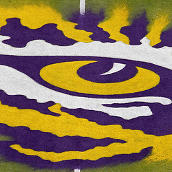 October 22, 2011; Baton Rouge, LA, USA; A detailed view of the LSU Tigers logo at midfield prior to kickoff of a game between the LSU Tigers and the Auburn Tigers at Tiger Stadium.  Mandatory Credit: Derick E. Hingle-US PRESSWIRE / © Derick E. Hingle 2011