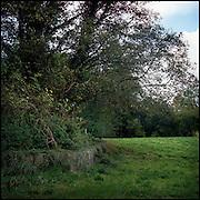 Le 18 octobre 2011, frontière Allemagne / Belgique, près d'Aix La Chapelle, RN 68. Vue de la frontière entre l'Allemagne et la Belgique matérialisée par un ancien petit muret à l'abandon, à hauteur de l'ancien poste frontière allemand de Köpfchen. L'Allemagne est à gauche du muret et la Belgique autour (pelouse)...