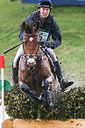 Credo III ridden by Richard Skelt in the Equi-Trek CCI-L4* Cross Country during the Bramham International Horse Trials 2019 at Bramham Park, Bramham, United Kingdom on 8 June 2019.