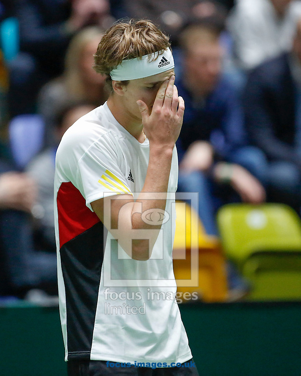 Alexander Zverev of Germany during the world group first round 2017 Davis Cup match between Germany and Belgium in the Fraport Arena, Frankfurt, Germany.<br /> Picture by EXPA Pictures/Focus Images Ltd 07814482222<br /> 05/02/2017<br /> *** UK &amp; IRELAND ONLY ***<br /> <br /> EXPA-EIB-170205-0219.jpg