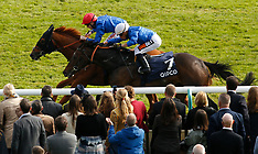 Newmarket: QIPCO Guineas Festival - Day Two 7 May 2017