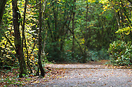 The Little River Loop Trail at Campbell Valley Park in Langley, British Columbia, Canada