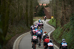 The peloton weave through the trees at the 2020 Omloop Van Het Hageland, a 130 km road race from Tienen to Tielt-Winge, Belgium on March 1, 2020. Photo by Sean Robinson/velofocus.com