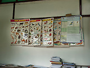 Nagas are right brained and very creative. They have a yen for languages. They have a conceptual mind. Fr.Jecinto Almeida, who runs a Jesuit school in Khonoma says that he has not seen a dull child in  Khonoma. Yet, the Indian education system, pushed down the minds of the children is like fitting a square peg into a round hole.