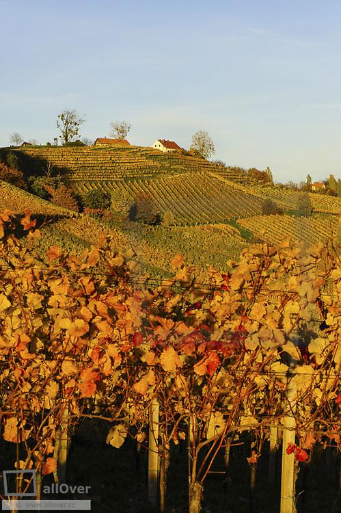 Suedsteirische Weinstrasse, Southern Styria wine route in autumn, Austria, Styria, Southern Styria, Ratsch