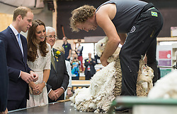 The Duke and Duchess of Cambridge at the Royal Easter show in  Sydney, Australia, where they met Fred the Ram,  Friday, 18th April 2014. Picture by  i-Images UK OUT for 28 days from date of creation