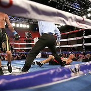 Cosme Rivera (R) falls to the canvas after a punch by Sergei Lipinets during a Telemundo Boxeo boxing match at the A La Carte Pavilion on Friday,  March 13, 2015 in Tampa, Florida.  Lipinets won the bout.  (AP Photo/Alex Menendez)