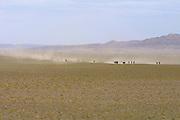 GOBI DESERT, MONGOLIA..08/26/2001.Bayangovi. Local Naadam festival. Horse race over 30 kilometers..(Photo by Heimo Aga).