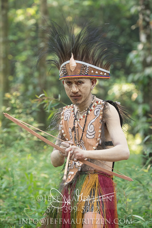A West Papua child dressed up in traditional indigenous costume holds a bow and arrow in the forest.