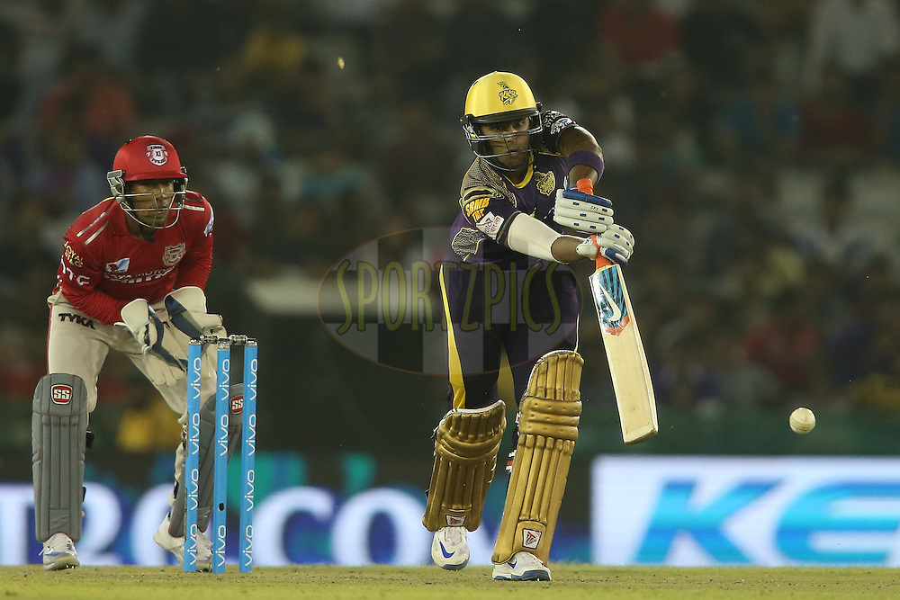 Suryakumar Yadav of Kolkata Knight Riders drives a delivery during match 13 of the Vivo Indian Premier League (IPL) 2016 between the Kings XI Punjab and the Kolkata Knight Riders held at the IS Bindra Stadium, Mohali, India on the 19th April 2016<br /> <br /> Photo by Shaun Roy / IPL/ SPORTZPICS