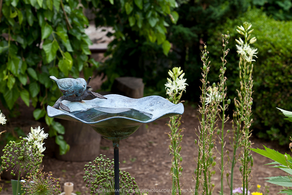 Decorative birdbath in an ornamental perennial garden.