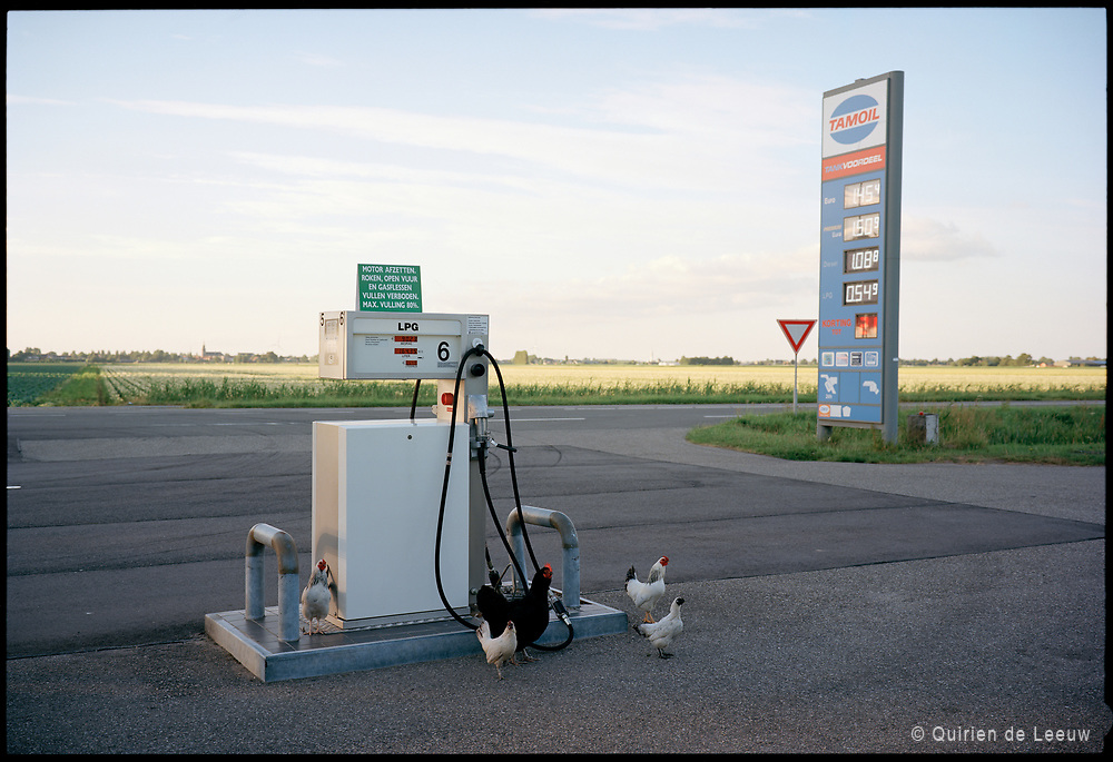 Tamoil benzinepomp in het nederlandse landschap. Holland Kodak Ektar collectie.