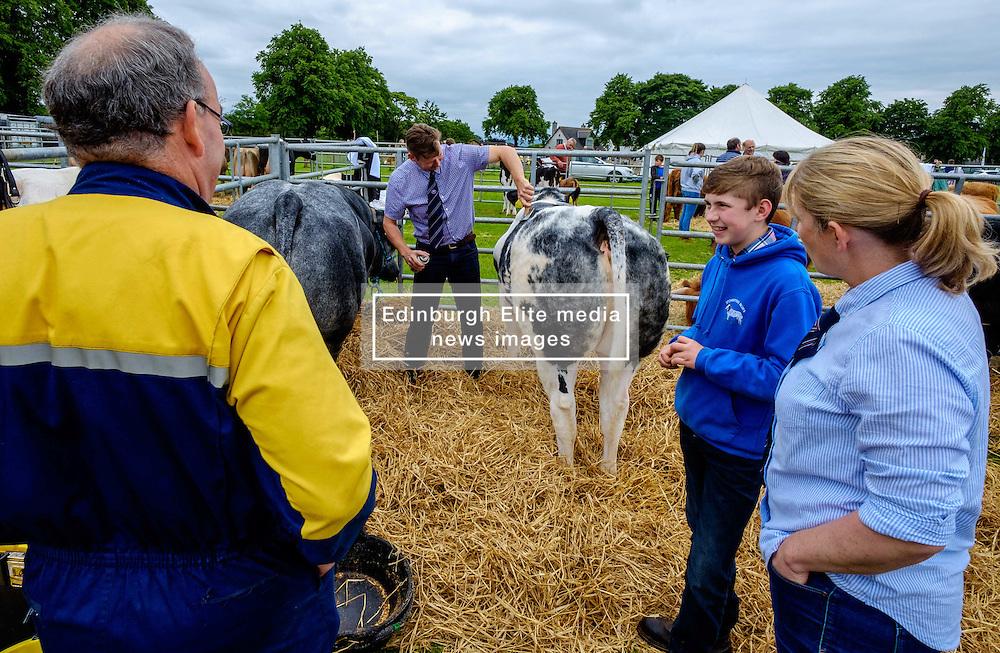 Biggar, South Lanarkshire, Scotland 23 July 2016<br /> <br /> Preparing cattle for showing.<br /> <br /> (c) Andrew Wilson | Edinburgh Elite media