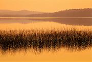 Crocker's Lake in morning fog<br /> White River<br /> Ontario<br /> Canada