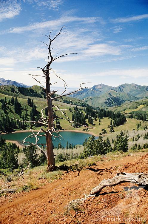 Desolation Lake above Park City UT, Utah