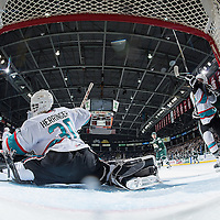010816 Everett Silvertips at Kelowna Rockets