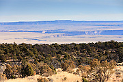 19 DECEMBER 2005 - MARBLE CANYON, AZ: Looking out over the Kaibab Plateau on the north rim of the Grand Canyon. PHOTO BY JACK KURTZ