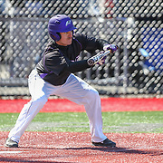 Kevin Paulsen #7 of the Niagara Purple Eagles prepares to bunt during the game at Friedman Diamond on March 16, 2014 in Brookline, Massachusetts. (Photo by Elan Kawesch)