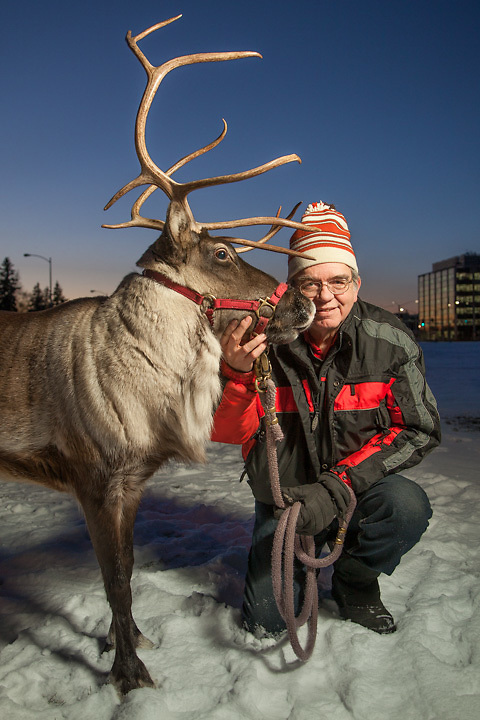 Albert Whitehead and his reindeer, Star, on the Delaney Park Strip, downtown, Anchorage