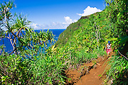Hiker on the lush Kalalau Trail on the Na Pali Coast, Island of Kauai, Hawaii