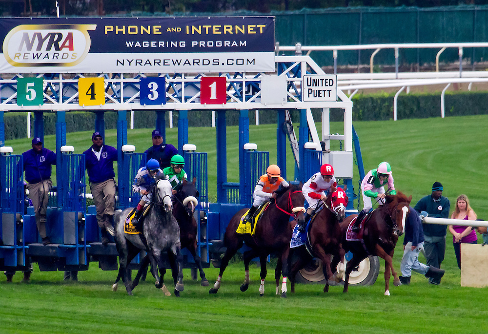 """The first of nine shots. """"Cape Blanco"""", a famous world renowned turf horse, leaves the starting gate for the Joe Hirsch Handicap. He was forced to take the lead before he wanted to, from """"Mission Approved"""". A lead I don't think he wanted so soon, due to the lack of speed in the race."""