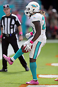 An official looks on as Miami Dolphins running back Jay Ajayi (23) celebrates after scoring a touchdown on a 4 yard run that ties the second quarter score at 14-14 during the 2016 NFL week 5 regular season football game against the Tennessee Titans on Sunday, Oct. 9, 2016 in Miami Gardens, Fla. The Titans won the game 30-17. (©Paul Anthony Spinelli)